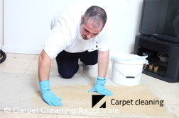 Carpet Dry Cleaning Company Ascot Vale 3032