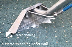 Rug Cleaning Ascot Vale