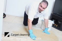 Ascot Vale Dry Carpet Cleaning  Services