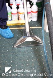 Professional Deep Carpet Cleaning in Ascot Vale