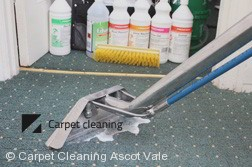 Ascot Vale 3032 Steam Carpet Cleaning Services