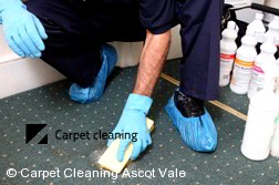 Carpet Cleaning Ascot Vale 3032